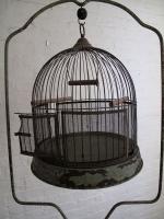 157_birdcage.jpg